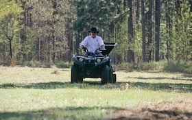 Big Vs. Small Food Plots