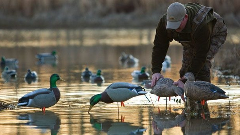 Hunting Small Water Ducks