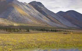 Congress Flips Obama-Era Rule On Hunting Alaskan Refuge Lands