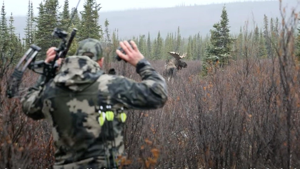 Video: Spot-and-Stalk Archery Moose in the Yukon