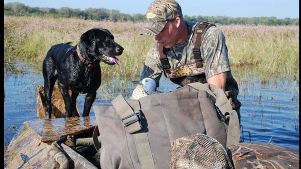 Top Teal Hunting Tactics