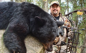 Bear Hunting Sparks Fierce Debate In Many States