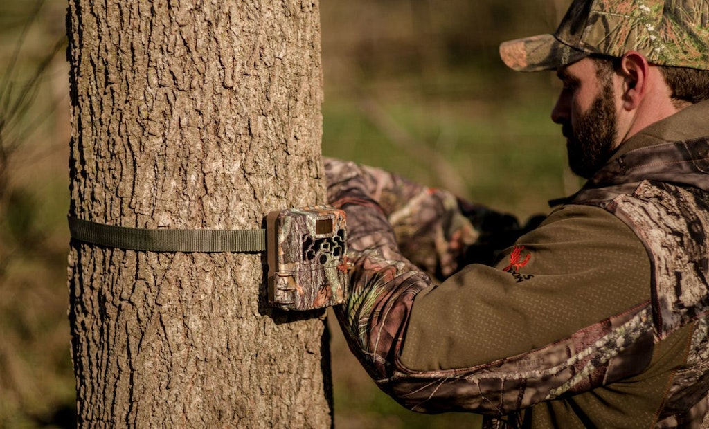 3 Hacks to Combat Trail Camera Thieves