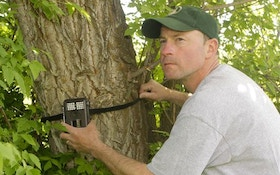 Trail cameras for predator hunting