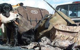 Traveling With A Hunting Dog, Part II