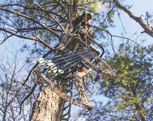 Placing treestands and cutting shooting lanes in August gives whitetails plenty of time to relax before opening day in September. (Photo by Mark Kayser.)