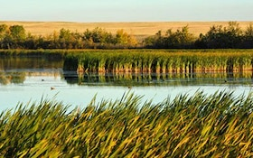 Why duck hunters should care about climate change