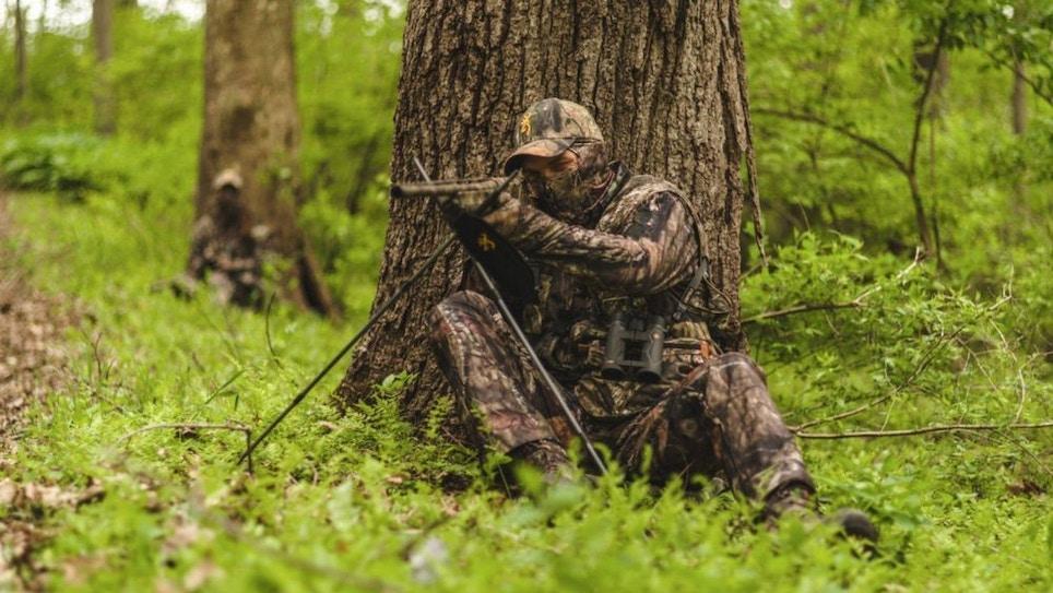 Hiding in Plain Sight of Wild Turkeys