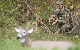 Calling Whitetail on the prowl—part 2