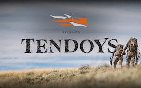 Hunting Rocky Mountain Bighorns In The Tendoys