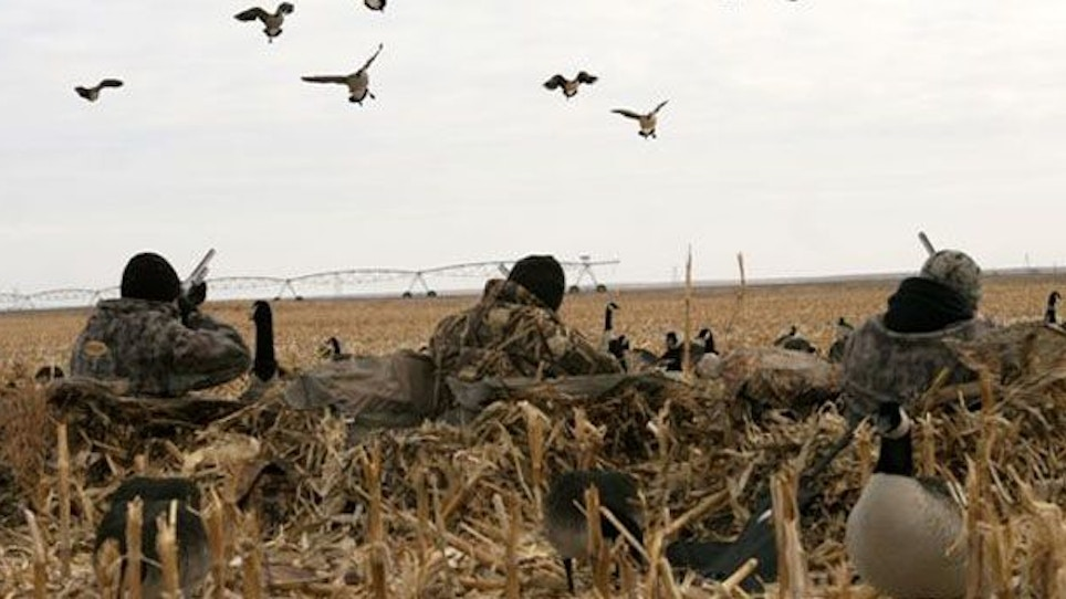 Waterfowling With Confidence Decoys
