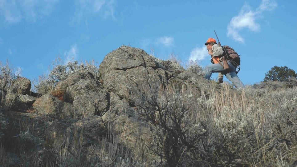 Hunting Western Whitetails