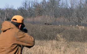 Hunter's dilemma: should you shoot does with fawns?
