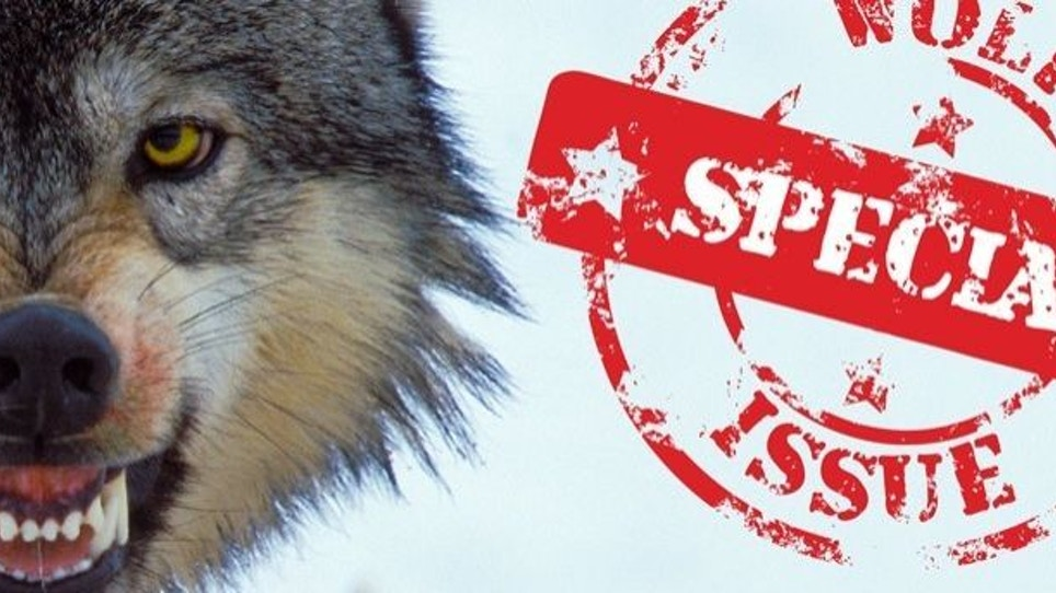 Predator Xtreme Examines How Wolves Affect Big Game Hunting