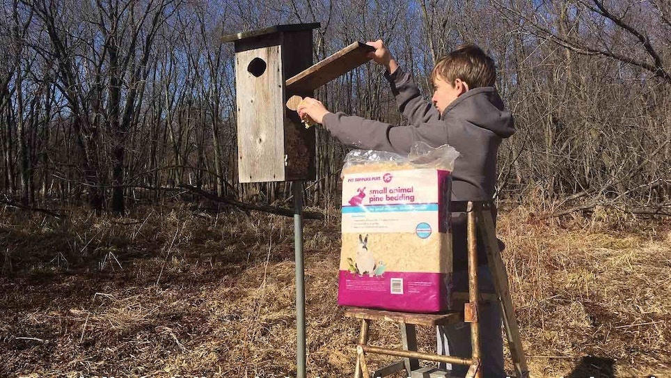 Wood Duck House Maintenance