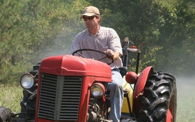 The Hard Truth About Food Plots, Part 1
