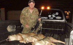 From The Readers: Coyote Shootout!