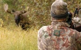 Bowhunting Yukon Bull Moose