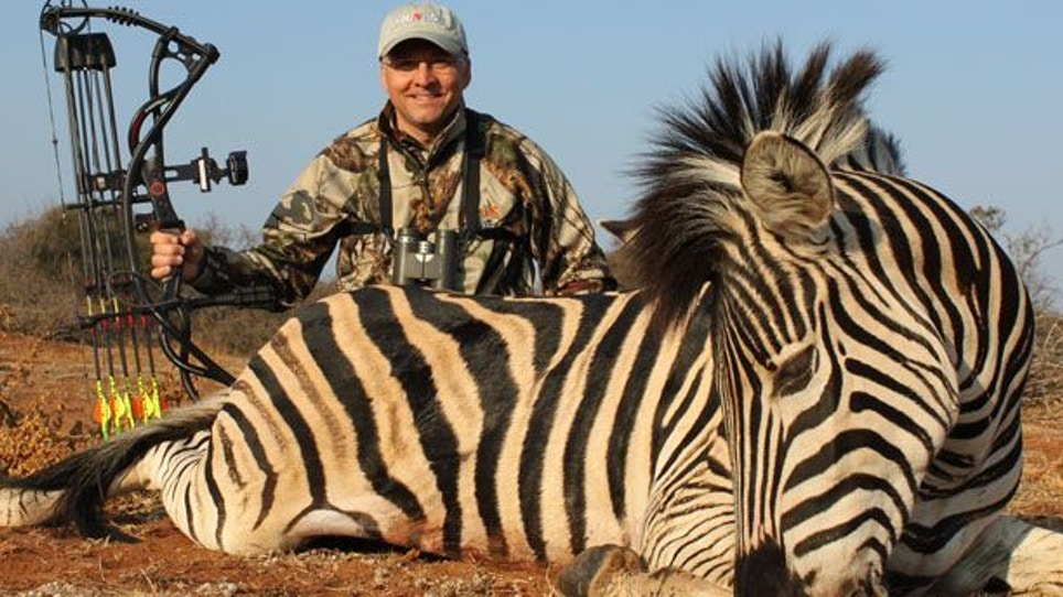 About That Zebra