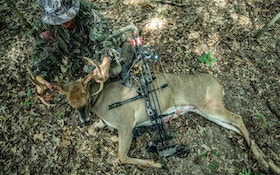Bear Archery Announces Partnership With 'The Hunting Public'