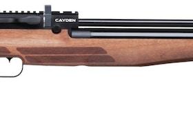 Benjamin Cayden Hunting Air Rifle