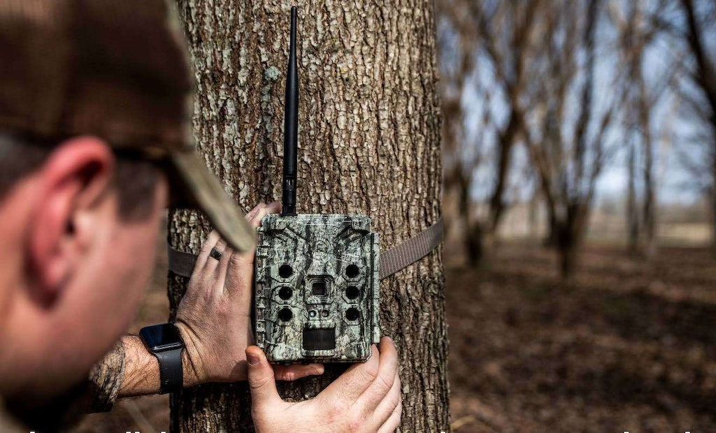 8 Top-Notch Trail Cameras for 2021