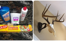 Stocking — and Selling — Supplies for DIY European Mounts