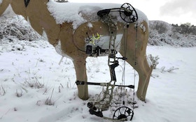 New Bow Review: 2019 Mathews VERTIX