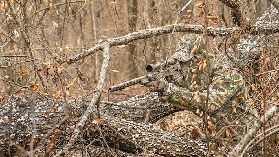 Stocking Camouflage Leads to Hidden Profits