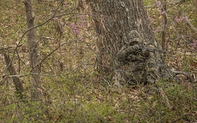 8 Great Camo Patterns for Hunters