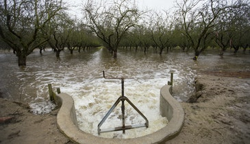 Flooding Farms, Restoring Groundwater