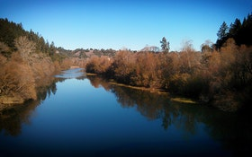Scientists Study Wildfires' Effect on California Utility's Drinking Water Source