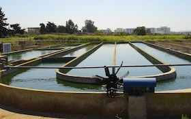Microalgae and Wastewater Treatment
