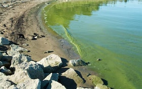 Recommendations for Water Utilities Battling Algal Blooms