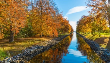 Fall Foliage Fouls Stormwater Runoff