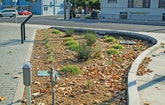 Green Stormwater Initiatives Make Silicon Valley an Industry Leader