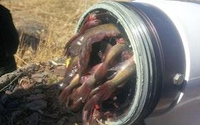 Fish Clog Dry Hydrant