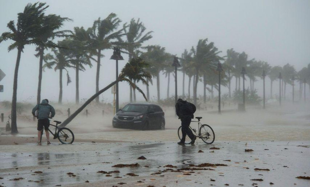 Contractors Step Up to Help Municipalities with Hurricane Cleanup