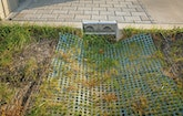 Utility Takes Proactive Approach to Stormwater