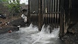 Study Finds Harmful Microbes on Sewer Pipe Walls