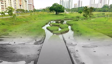 Video Contest Winners Share Important Messages About Stormwater