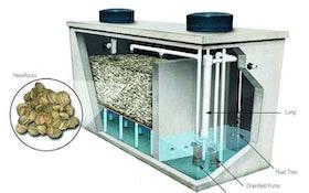 Nitrogen Reduction Systems - Eliminite Commercial C-Series