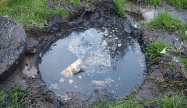 Key Toxins to Keep Out of Septic Systems