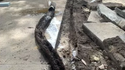 Plumber Finds Anaconda-Sized Root Growth in Storm Pipe