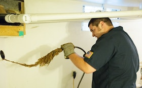 Tackling Root Intrusion Requires a Solid Plan