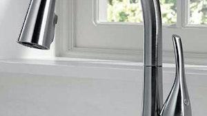 Fixtures - Delta Faucet Esque kitchen faucet