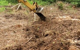Do Not Disturb: The Soil, That Is!
