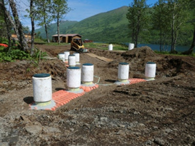 Bear Necessities: A Tricky Septic Installation Improves Wild Critter Research
