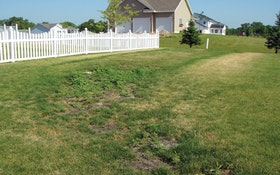 Should the Grass Be Greener Over the Septic Field?