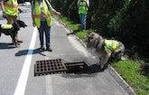 Dogs Sniff Out Wastewater Leaks That Threaten The Environment